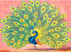 Peacock-Bird Paintings