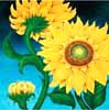 Sunflower oil painting.