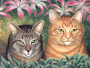Tabby Cats and Orchids - Cat  Gallery