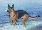 Doberman Pinscher Oil Painting