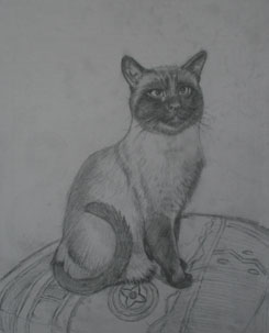 Cat Painting Stage 1