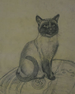 Cat Painting Stage 2